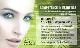 COMPETENCE IN ESTHETIC